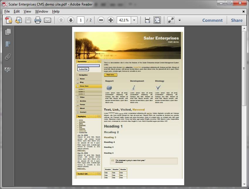 Open file in Adobe Reader X