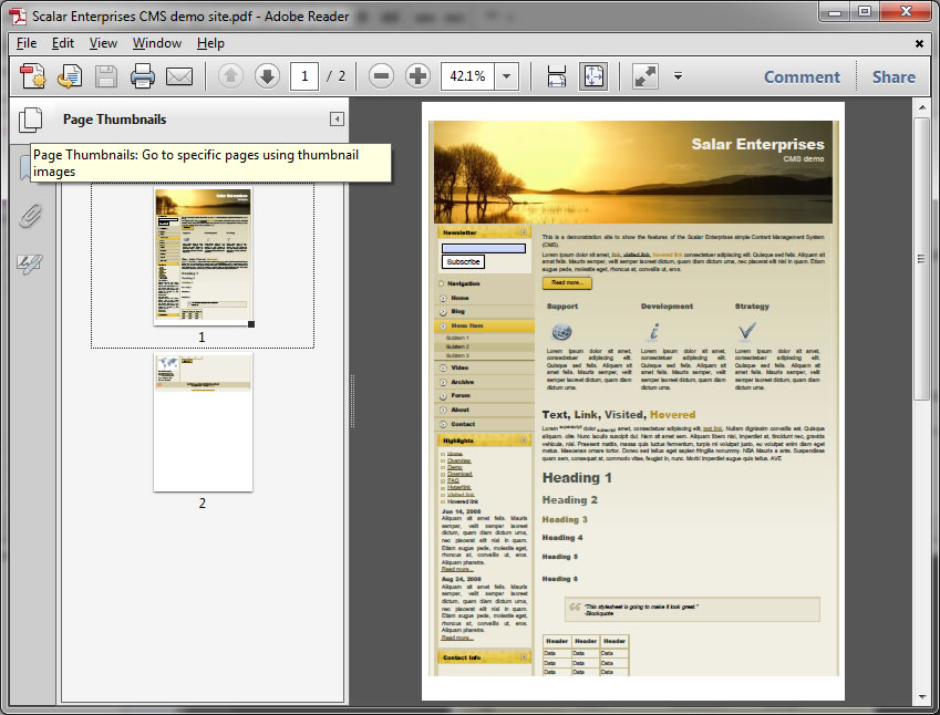 Adobe Reader X thumbnail viewer